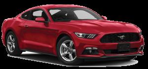 Mustang-SEO-Image2-Backwards