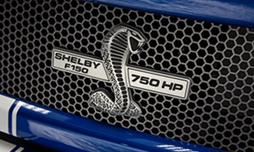 New Shelby F 150 Super Snake In Dickinson